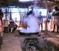 Cooking the sugar cane juice